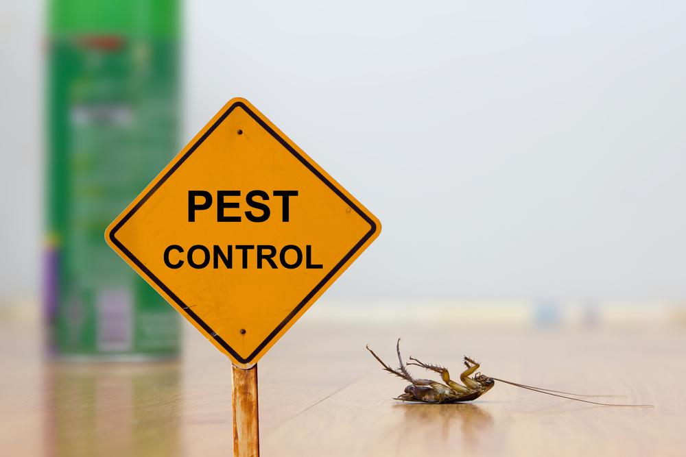 Gainesville Pest Control